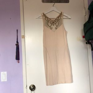 FreePeople Antique Pink Bodycon